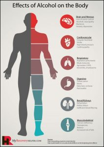 alcohol the effects on the body