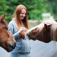 Power of Equine Facilitated Psychotherapy