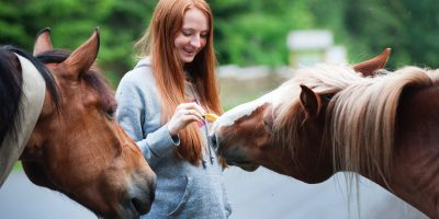 Power of Equine Facilitated Psychotherapy - Ivan Broad